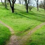 The Less Traveled Path