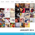 Photo A Day Challenge – January 16-31, 2014