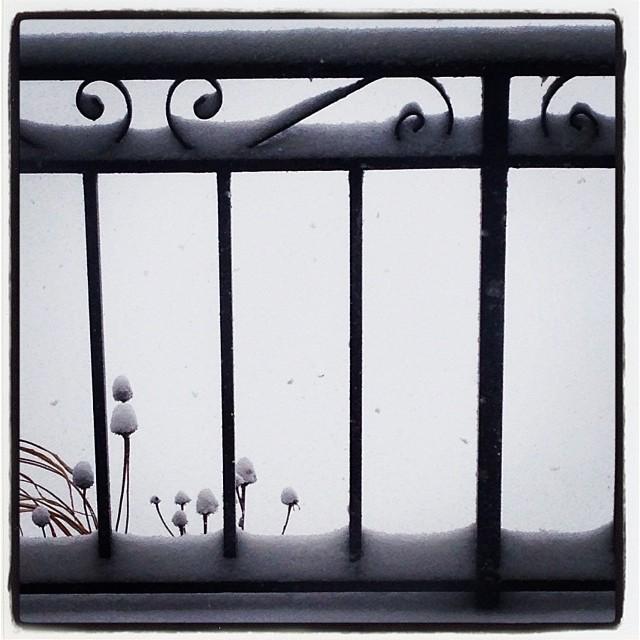 blizzard02