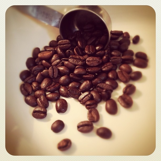 coffeebeans2