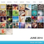 Photo A Day Challenge – June 17-30, 2014
