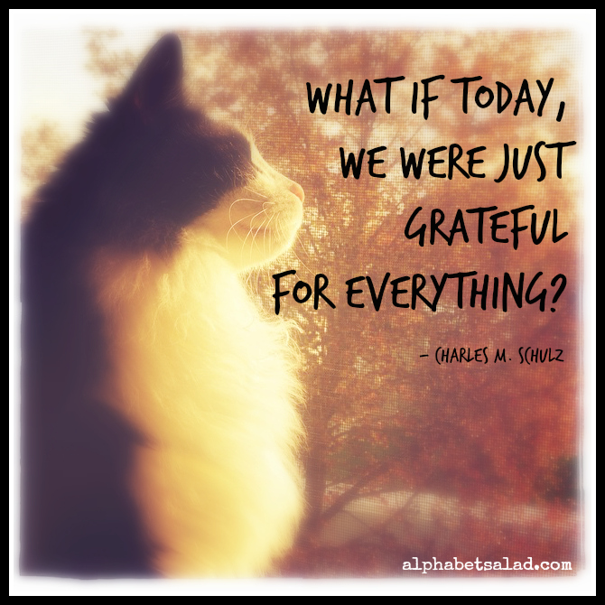 For Today Gratitude + 10 Free eBooks With Resell rights ( PDF )1
