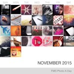 Photo A Day Challenge – November 19-30, 2015