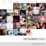 Photo A Day Challenge – December 17-31, 2015