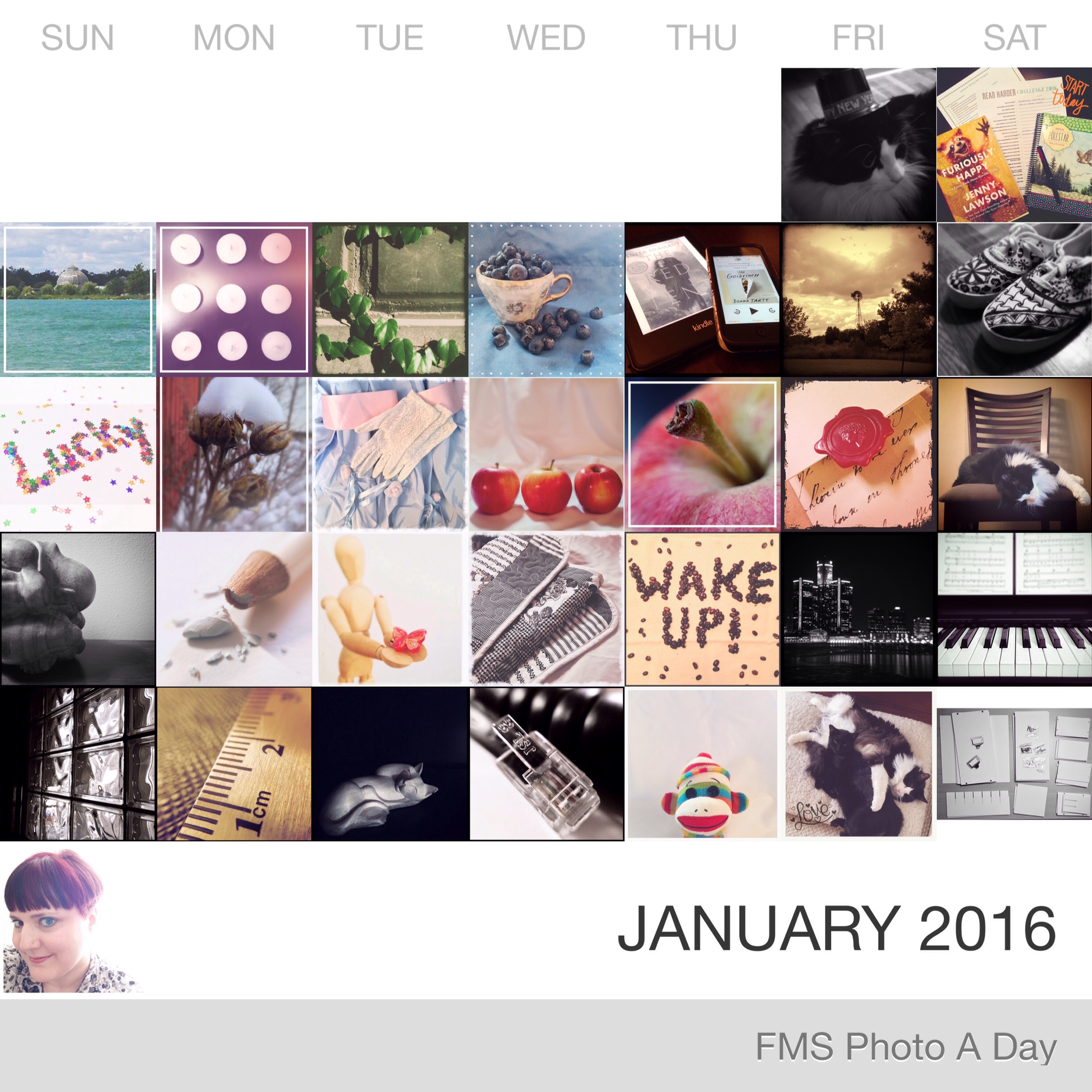 FMS Photo A Day Challenge - January 2016