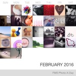 Photo A Day Challenge – February 19-29, 2016