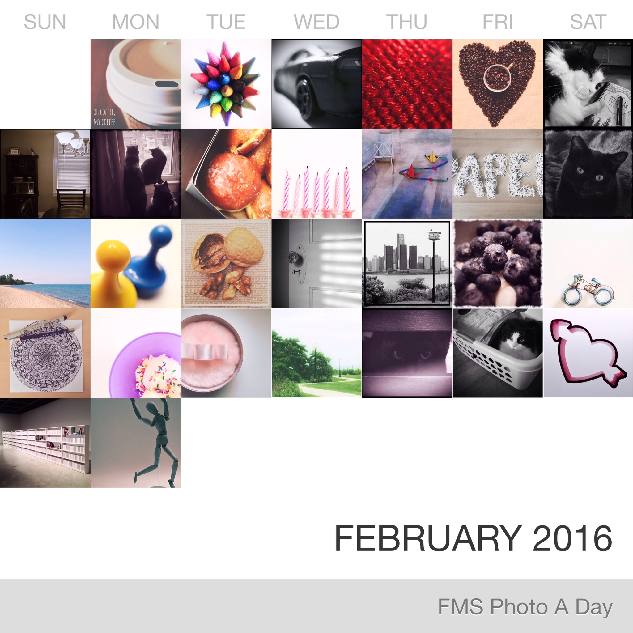 FMS Photo A Day February 2016