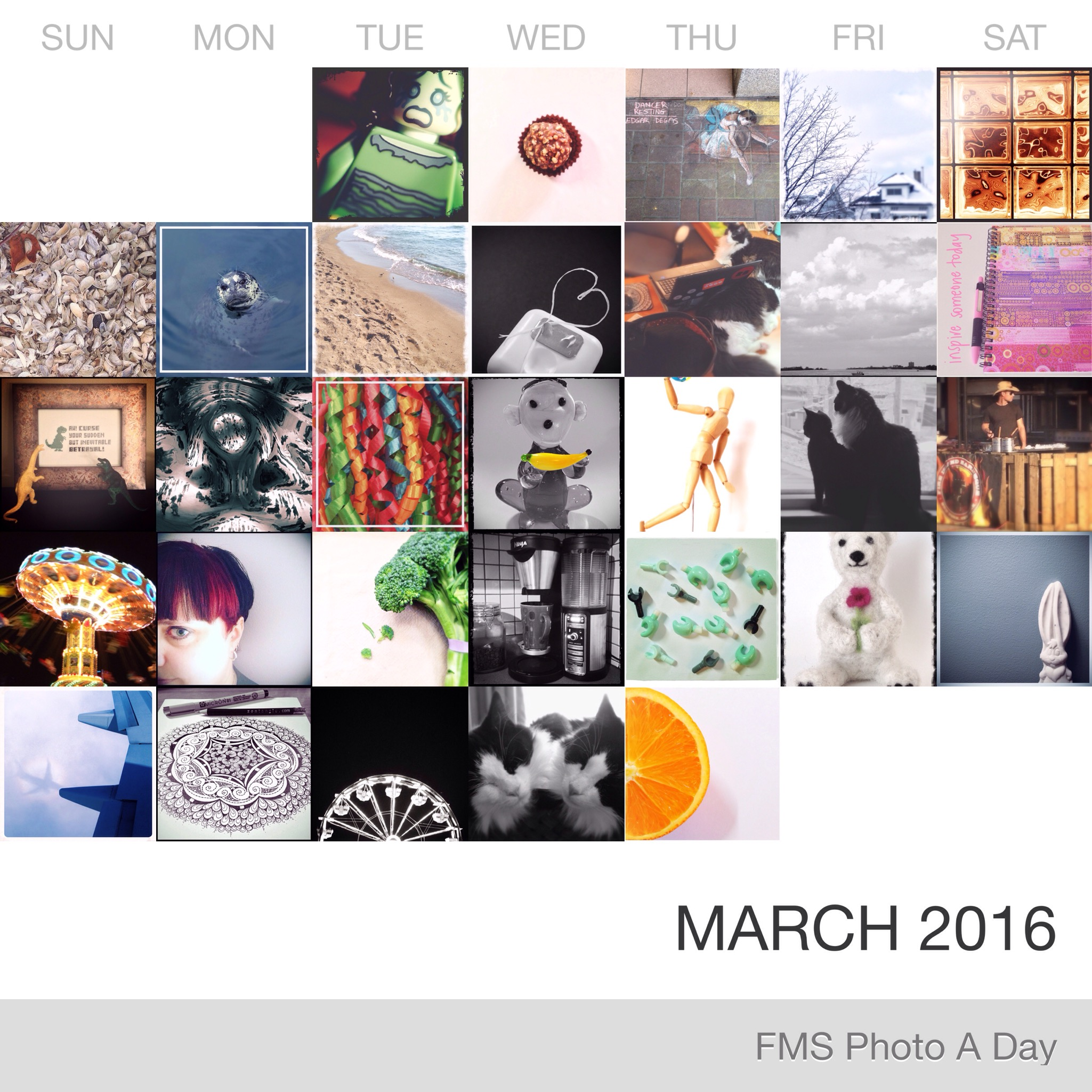 FMS Photo A Day March 2016
