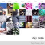 Photo A Day Challenge – May 1-31, 2016