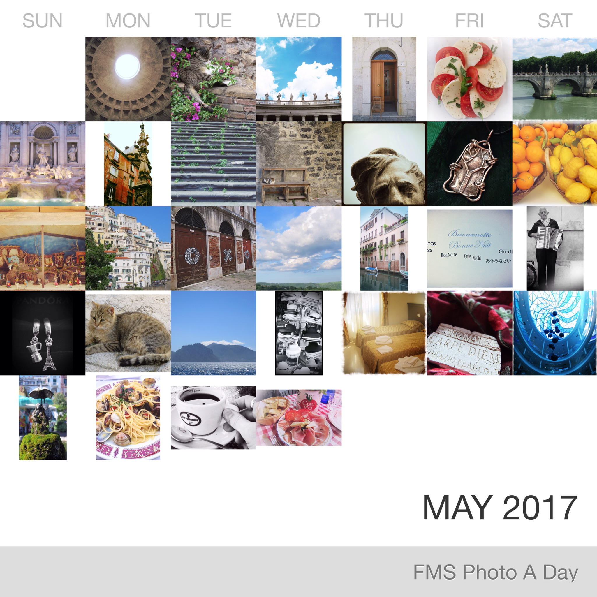 FMS Photo A Day May 2017